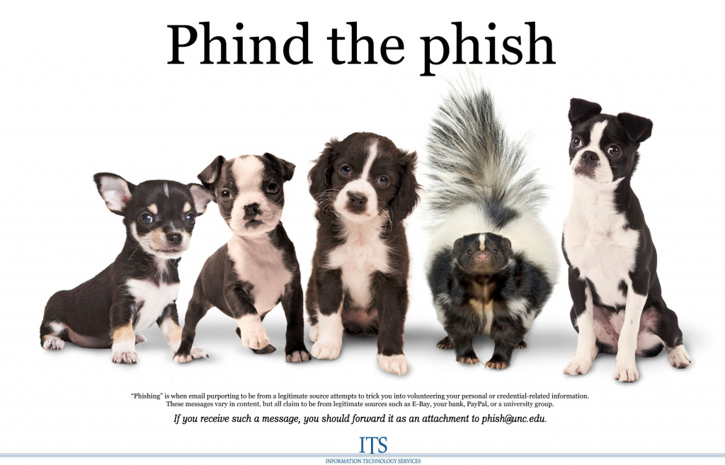 Phind the phish: four puppies and a skunk