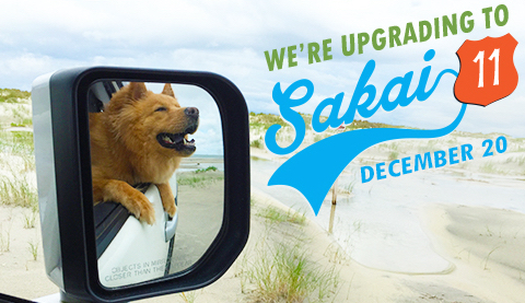We're upgrading to Sakai 11 December 20, with image of a dog in the rearview mirror