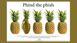 Phind the phish poster with pineapples