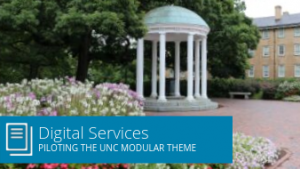 Digital Services: piloting the UNC modular theme